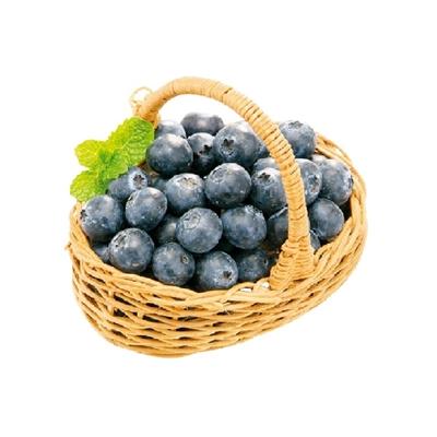 智利藍莓 (125g)-705228
